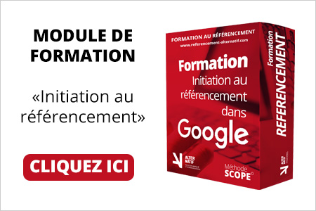 formation referencement